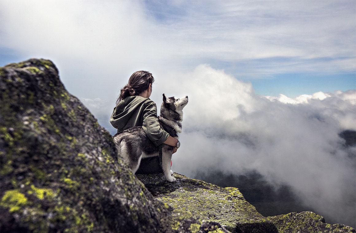 Неразлучные собака и ее хозяйка