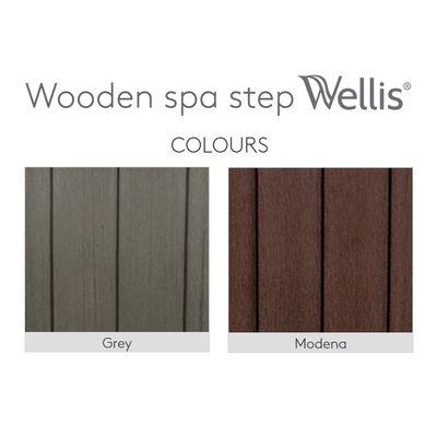 Деревянные ступени Wellis «Matte gray»