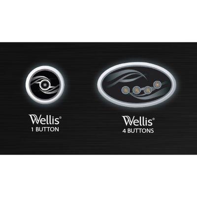 Сенсорная панель управления (4-кнопочная) Wellis