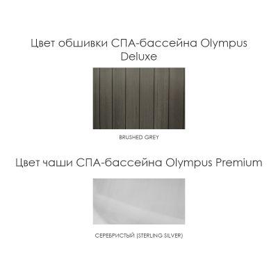 СПА-бассейн Wellis Olympus Deluxe